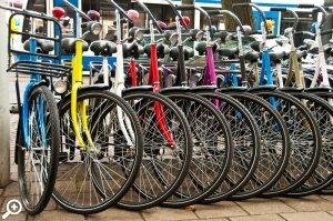 прокат велосипедов в парке сосновка