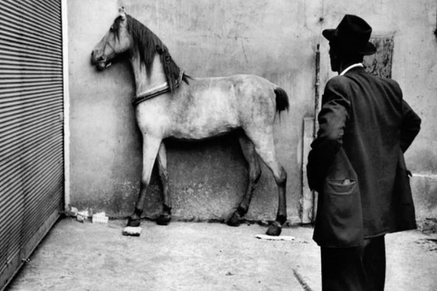 Вечная встреча цыгана и лошади
