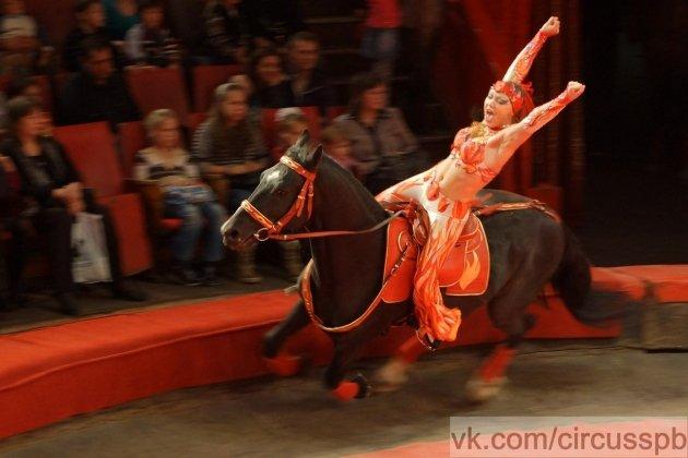 Цирк на Фонтанці офіційний сайт