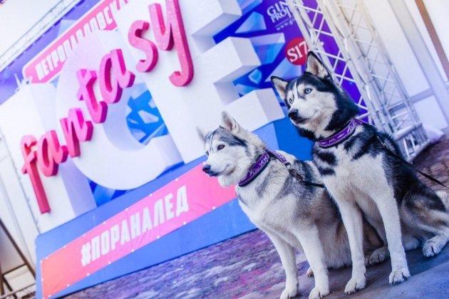 Петропавловская крепость готовится принять Фестиваль ледовых скульптур