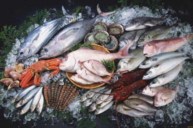 ловить небо и земля намерение рыб
